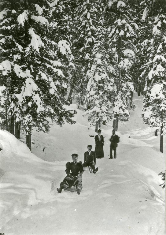 Sledging in Davos in 1890